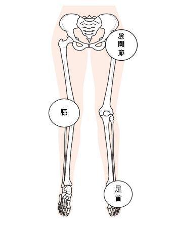 外反母趾 関連図